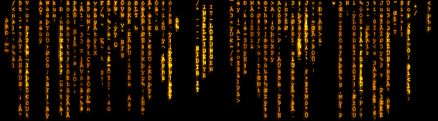 Titelbild Softwareentwicklung